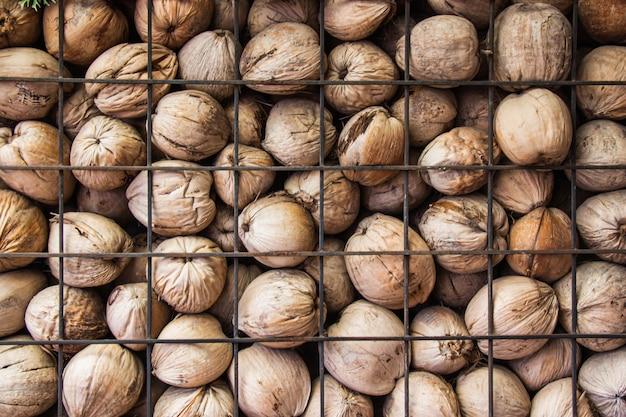 Les murs sont faits de tas de noix de coco brunes séchées avec une grille en acier. Photo Premium