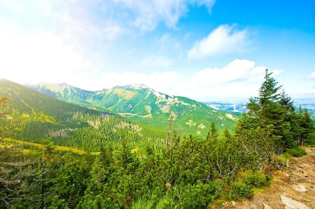 La nature dans les montagnes. Photo gratuit