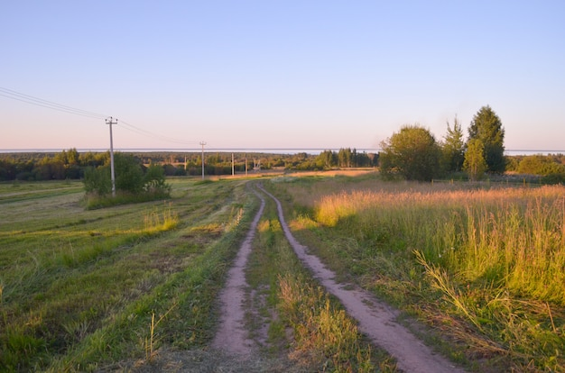 La nature en russie. route au champ Photo Premium