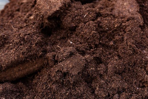 Nettoyer le sol pour la culture. Photo Premium