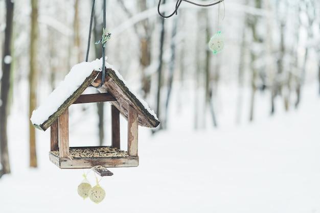 Nichoir Et Mangeoire à Winter Park Photo Premium