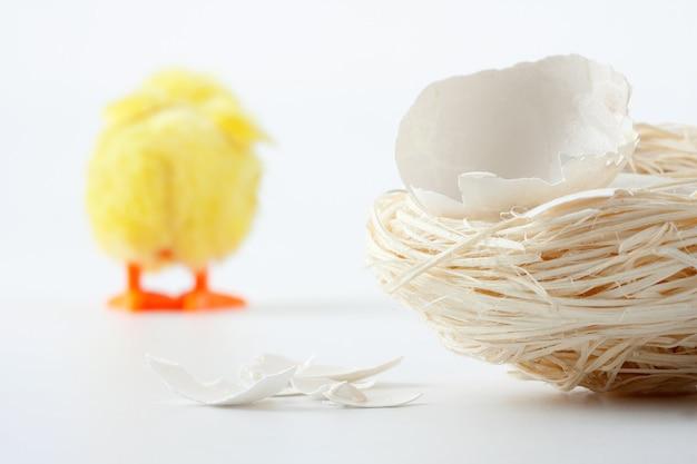 Nid Avec Fissures De Coquille D'œuf Et Poulet Photo Premium