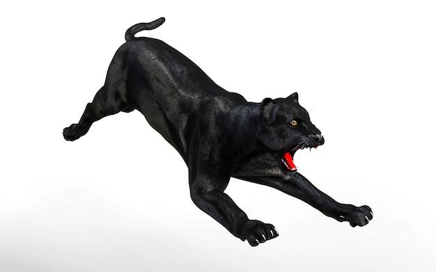 Noir panthère isoler sur fond blanc, tigre noir, illustration 3d, rendu 3d Photo Premium