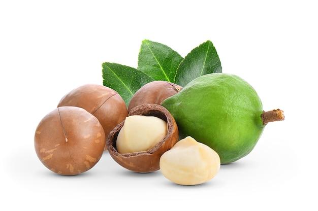Noix de macadamia avec des feuilles isolé sur fond blanc. Photo Premium