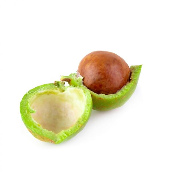 Noix de macadamia fraîches isolés sur fond blanc Photo Premium