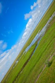 Normandie pâturages champs hdr Photo gratuit