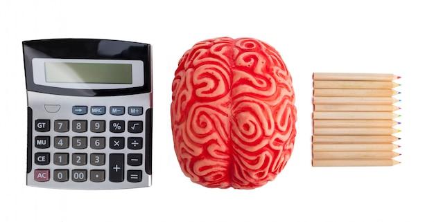 Notion d'hémisphère cérébral entre logique et créativité. Photo Premium