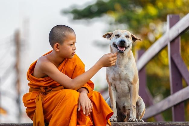 Novices et chien sur un pont en bois Photo Premium