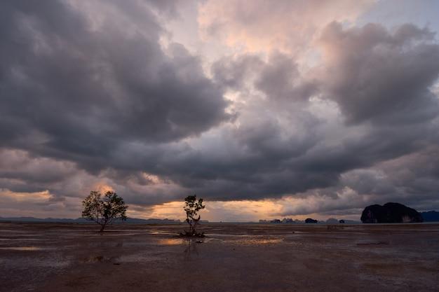 Nuages pluvieux sur une zone dégagée de marée basse. Photo Premium