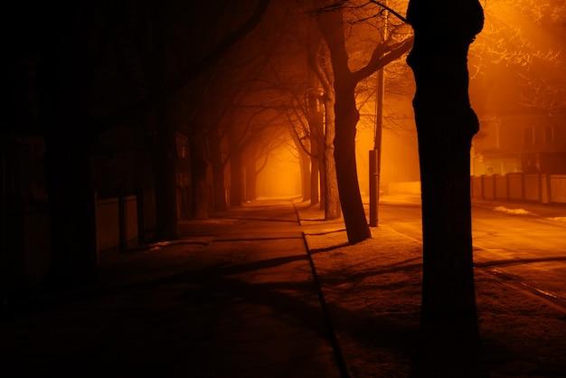 Nuit D'automne Brumeuse Photo gratuit