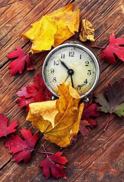 Octobre feuilles Photo Premium