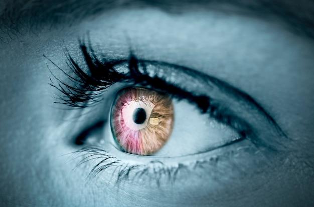 Oeil orange et rose sur le visage gris Photo Premium
