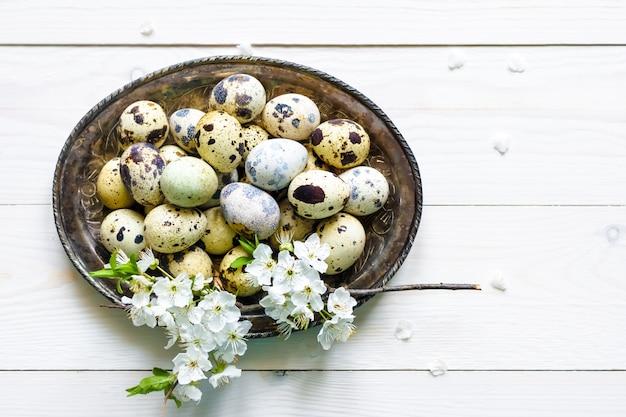 Oeufs De Caille De Pâques, Fleur D'abricot, Plaque Sur Un Fond En Bois Blanc Photo Premium