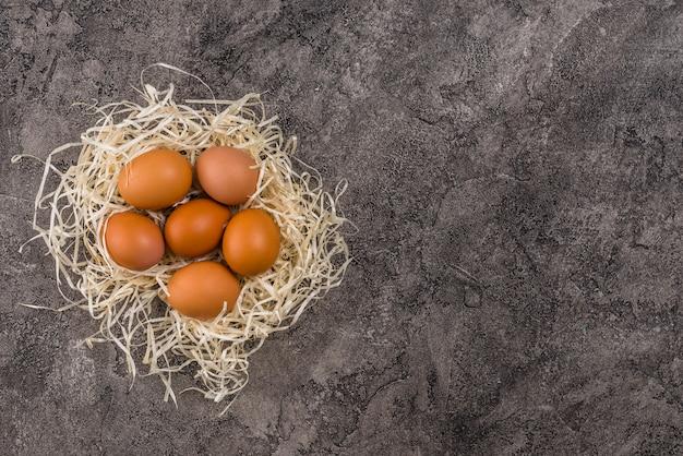 Œufs de poule brune au nid sur la table Photo gratuit