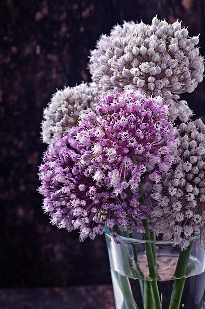 Oignon Fleurs Sur Vieux Bois Photo gratuit