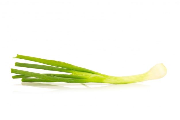 Oignon de printemps isolé sur fond blanc Photo Premium