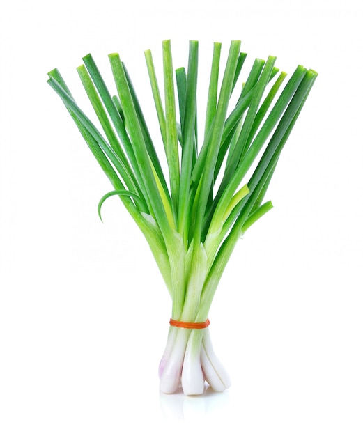 Oignon vert isolé sur fond blanc Photo Premium