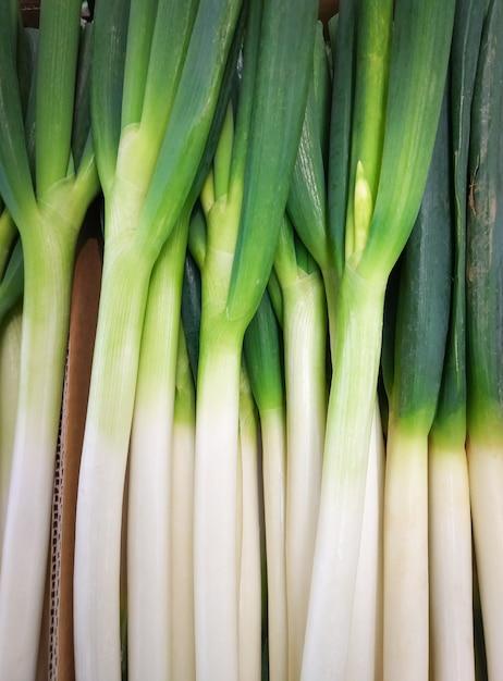 Les oignons frais sont des oignons verts en bonne santé. Photo Premium