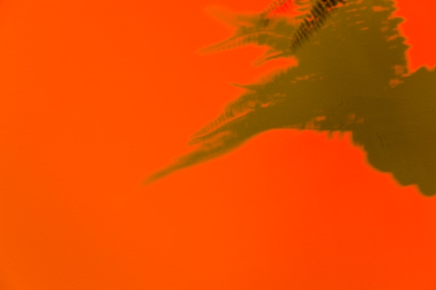 Ombre de feuilles sur fond orange Photo gratuit