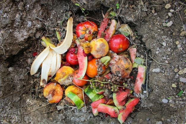 Les ordures ménagères pour le compost de fruits et légumes dans le jardin. Photo Premium