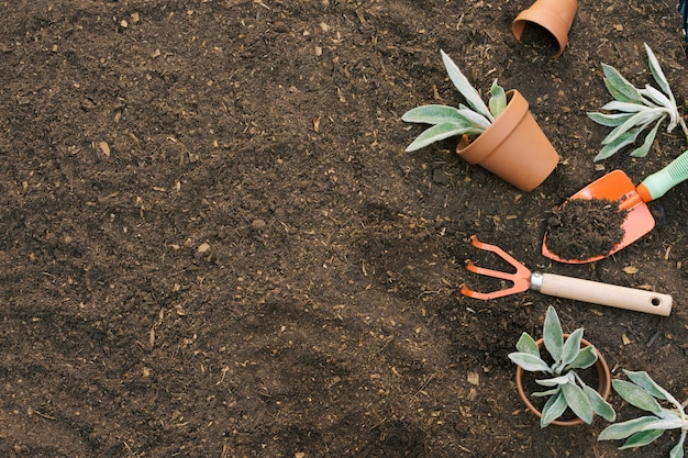 Outils disposés pour le jardinage sur le sol Photo gratuit