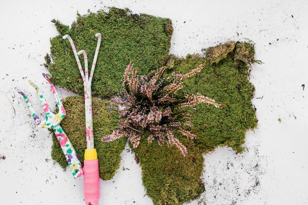Outils de jardinage avec gazon sur fond blanc Photo gratuit