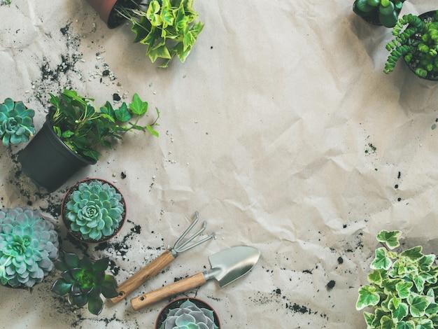 Outils de jardinage avec plantes succulentes et lierre en pots sur papier kraft Photo Premium