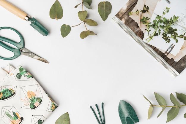 Outils de jardinage vue de dessus Photo gratuit