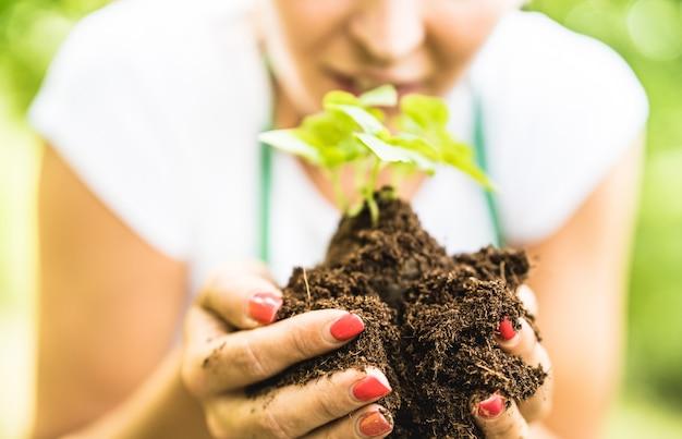 Ouvrière prenant soin de petite plante de basilic à la ferme alternative Photo Premium