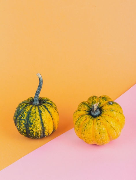 Une paire de petites citrouilles sur fond jaune et rose Photo gratuit