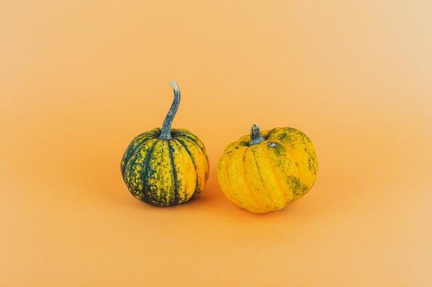 Une paire de petites citrouilles sur fond jaune Photo gratuit