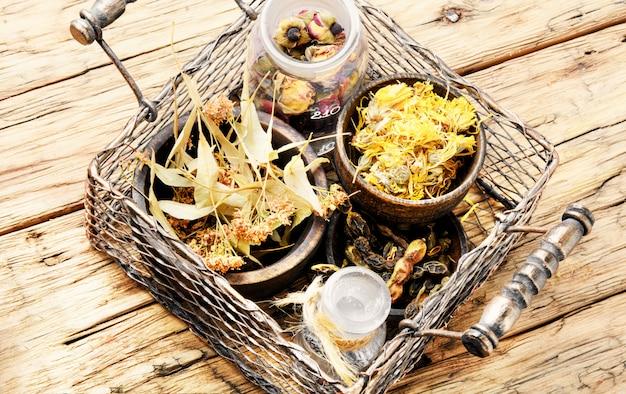 Panier avec des herbes médicinales Photo Premium