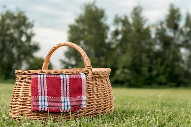 Panier pique-nique sur l'herbe du parc Photo gratuit