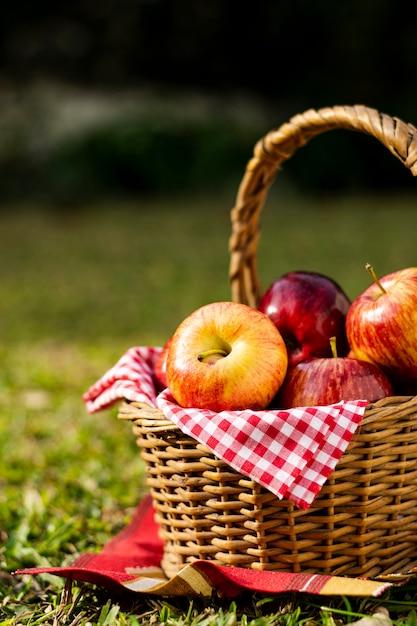 Panier pique-nique rempli de pommes Photo gratuit