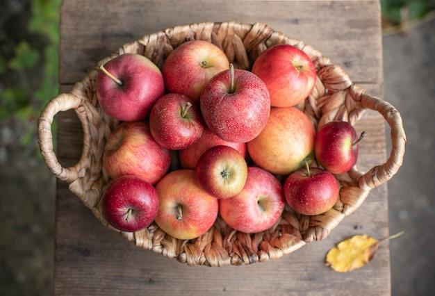 Panier de pommes mûres savoureuses sur un jardin Photo Premium