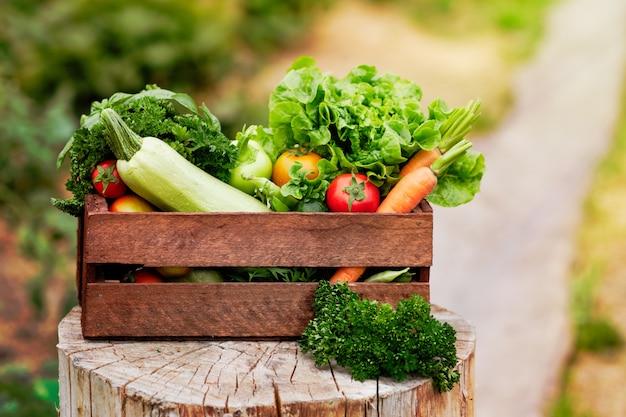 Panier Rempli De Légumes Et De Récolte Biologiques De La Ferme Biologique. Photo Premium