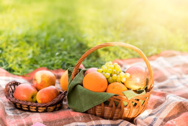 Paniers de fruits sur la couverture de pique-nique dans le parc Photo gratuit