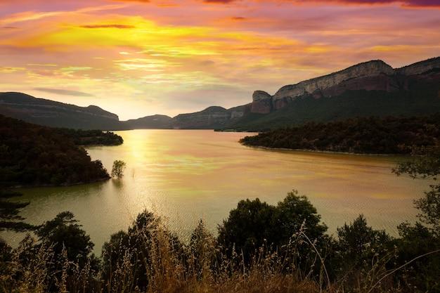 Panta de sau au coucher du soleil Photo gratuit