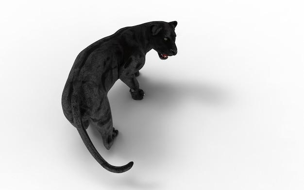Panthère noire isoler sur fond blanc, tigre noir, illustration 3d, rendu 3d Photo Premium