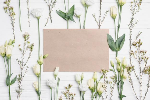 Papier au milieu de la composition des plantes Photo gratuit