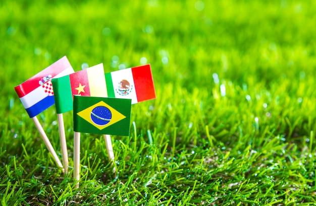 Papier couper des drapeaux sur l'herbe pour le championnat de football 2014 Photo gratuit