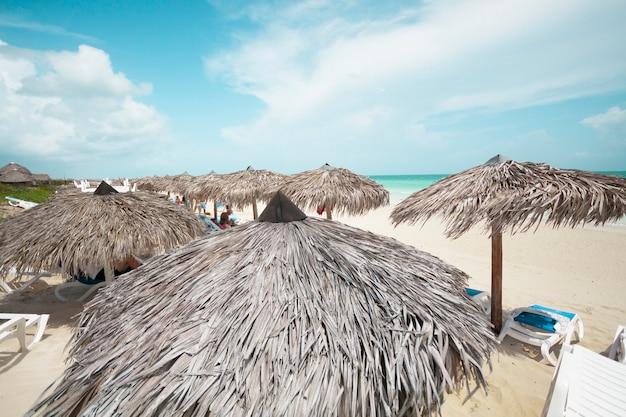 Parapluie de paume long shot à la plage de la station Photo gratuit