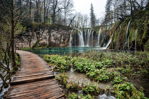 Parc National Des Lacs De Plitvice, Croatie Photo Premium