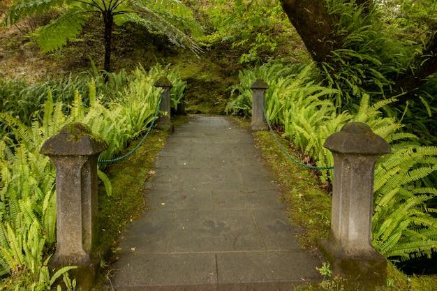 Parc naturel de terra nostra Photo Premium