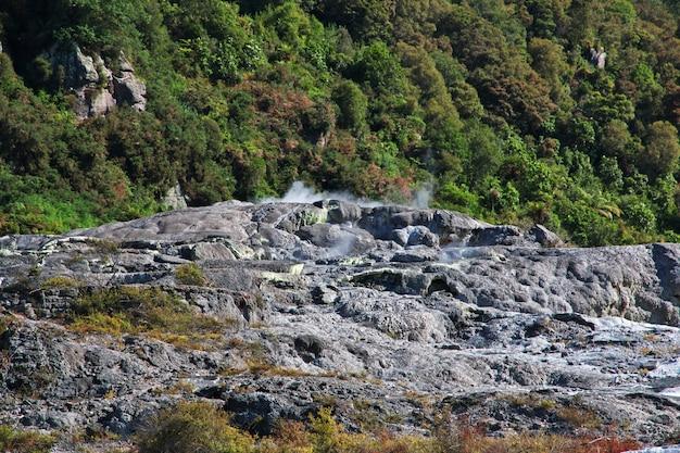 Parc Thermal De Rotorua, Nouvelle-zélande Photo Premium