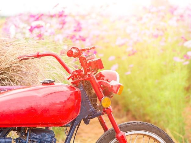 Parking moto dans le champ de la fleur Photo Premium