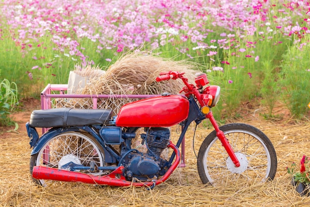 Parking moto dans un champ de fleurs Photo Premium
