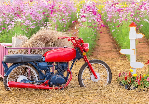 Parking moto dans un champ de fleurs Photo Premium