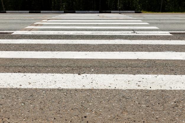 Passage pour piétons blanc à travers la route. Photo Premium