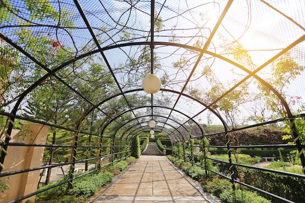 La passerelle transparente sous tunnel métallique avec des fleurs et des arbres dans le jardin avec la lumière du soleil. Photo Premium